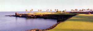 Golf Course, HawaII Resort