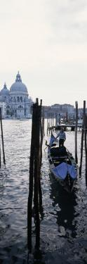 Gondolier in Gondola with Cathedral in Background, Santa Maria Della Salute, Venice, Veneto, Italy