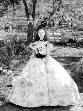 Gone with the Wind, Vivien Leigh at Tara Plantation, 1939