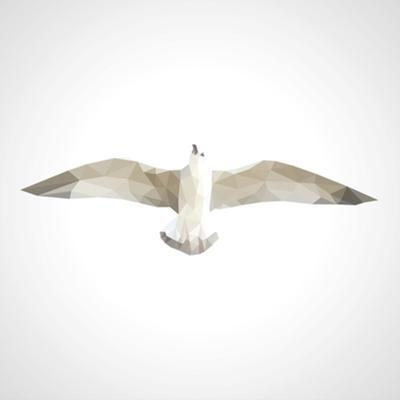 Polygonal Seagull in Flight on a White Background by goodwin_x