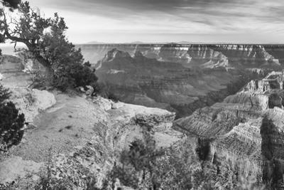 Grand Canyon 01 by Gordon Semmens