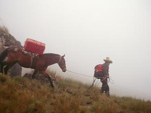 A Horseman Descends a Foggy Trail Through 'Halka' Grasslands by Gordon Wiltsie