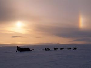Dog Musher and His Team Travel Under a Sun Dog Rainbow by Gordon Wiltsie