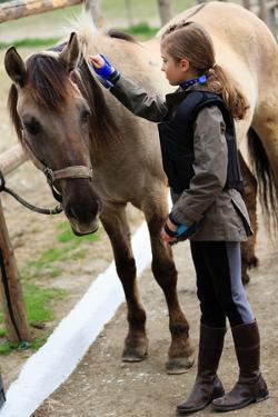 Horse and Lovely Equestrian Girl, Care for a Horse by Gorilla