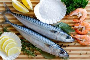 Seafood, Fish - Fresh Mackerel and Shrimps in Cuisine by Gorilla