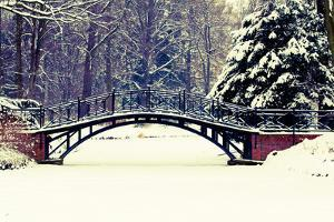 Winter Scene - Old Bridge in Winter Snowy Park by Gorilla