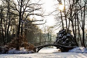 Winter Scene - Old Bridge in Winter Snowy Park by Gorilla