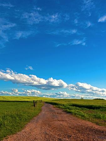 Trail Fields Summer Sky Landscape