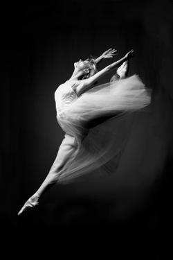 Grace in Motion