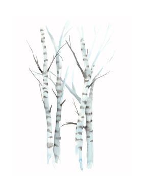 Aquarelle Birches I by Grace Popp