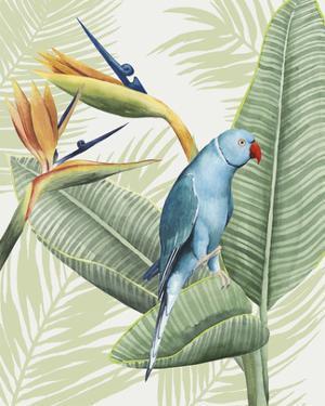 Avian Paradise III by Grace Popp