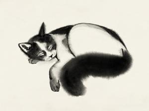 Cat Laze I by Grace Popp