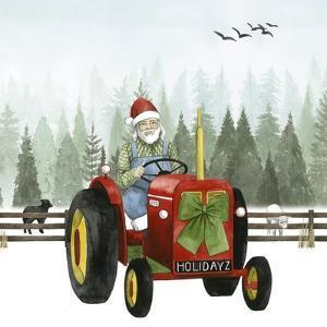 Country Santa I by Grace Popp