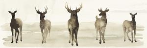 Deer Line I by Grace Popp