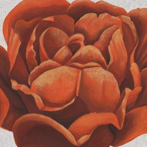 Fiery Floral II by Grace Popp