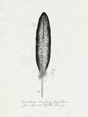 Found Feather II by Grace Popp