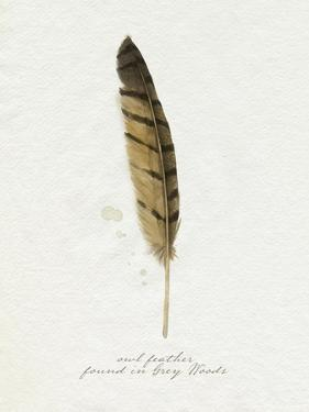 Found Feather III by Grace Popp