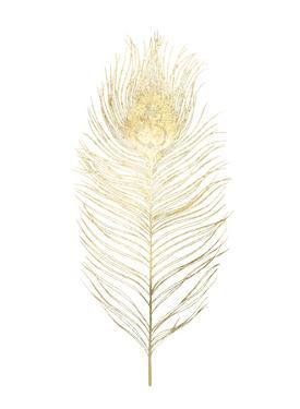 Gold Foil Peacock Feather I by Grace Popp