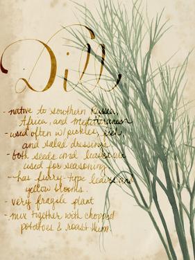 Herb Study II by Grace Popp
