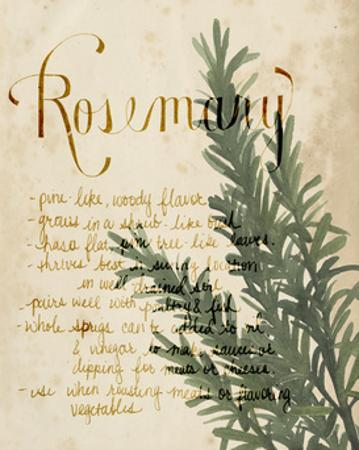 Herb Study IV by Grace Popp