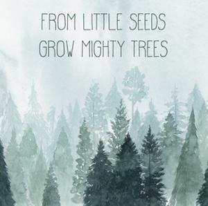 Little Grower I by Grace Popp