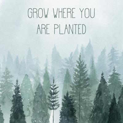 Little Grower II by Grace Popp