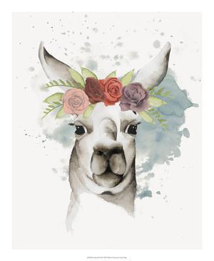 Llama Flora II by Grace Popp