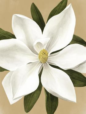 Magnolia on Gold II by Grace Popp