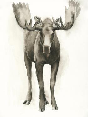 Majestic Wildlife I by Grace Popp