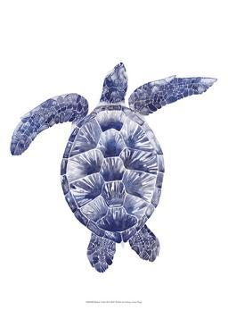Marine Turtle II by Grace Popp