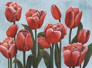 Ruby Tulips II by Grace Popp