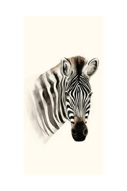 Safari Portrait II by Grace Popp