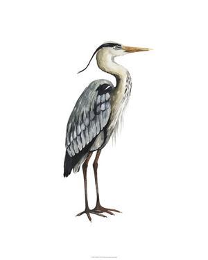 Sea Bird V by Grace Popp