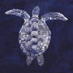 Sea Turtle Shadow I by Grace Popp