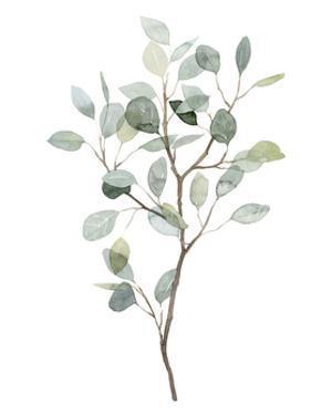 Seaglass Eucalyptus I by Grace Popp