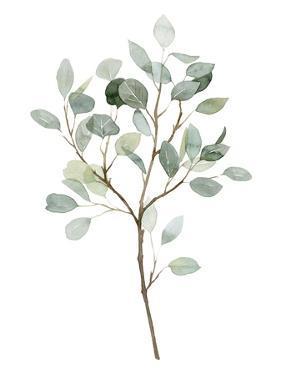 Seaglass Eucalyptus II by Grace Popp