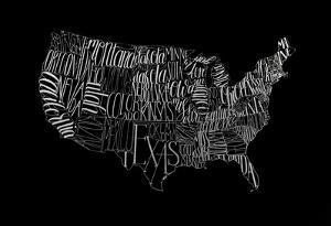 Silver Foil USA Map on Black by Grace Popp