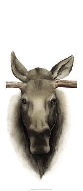 Triptych Moose II by Grace Popp