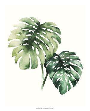 Tropical Plant II by Grace Popp