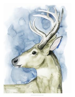 Wandering Stag I by Grace Popp