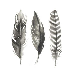 Watercolor Feathers I by Grace Popp