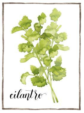 Watercolor Herbs IV by Grace Popp