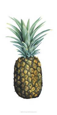 Watercolor Pineapple I by Grace Popp