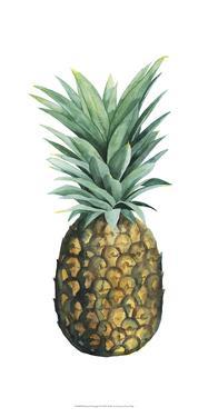 Watercolor Pineapple II by Grace Popp