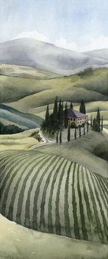 Watercolor Tuscany II by Grace Popp