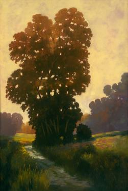 Summertime II by Graham Reynolds