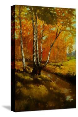 Woodland Stream I by Graham Reynolds