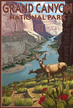 Grand CaNYon National Park, Arizona, Deer Scene