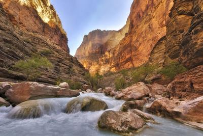 https://imgc.allpostersimages.com/img/posters/grand-canyon-national-park-arizona-usa_u-L-PN71ES0.jpg?p=0