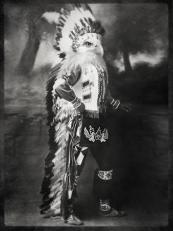 Chief Shikoba Featherbeard by Grand Ole Bestiary